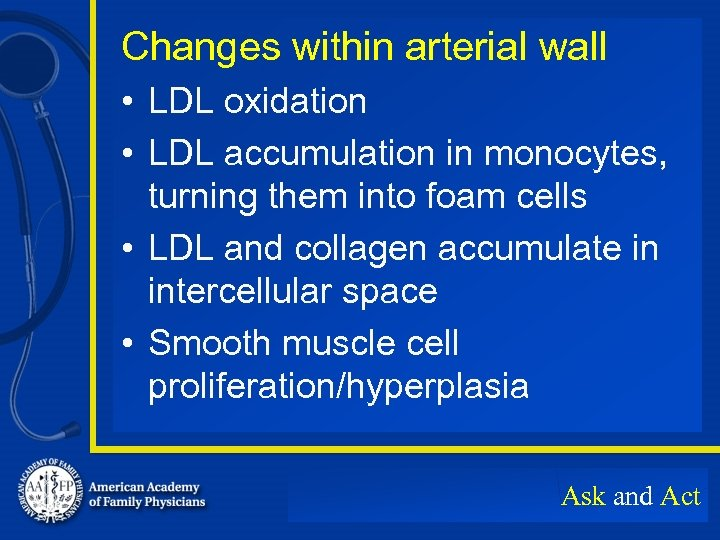 Changes within arterial wall • LDL oxidation • LDL accumulation in monocytes, turning them