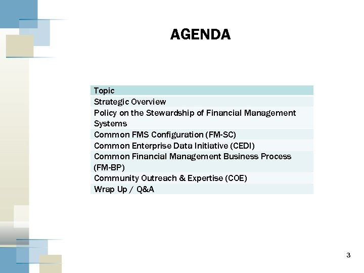 AGENDA Topic Strategic Overview Policy on the Stewardship of Financial Management Systems Common FMS