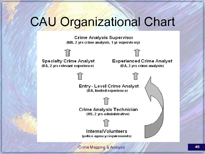 CAU Organizational Chart Crime Mapping & Analysis 48