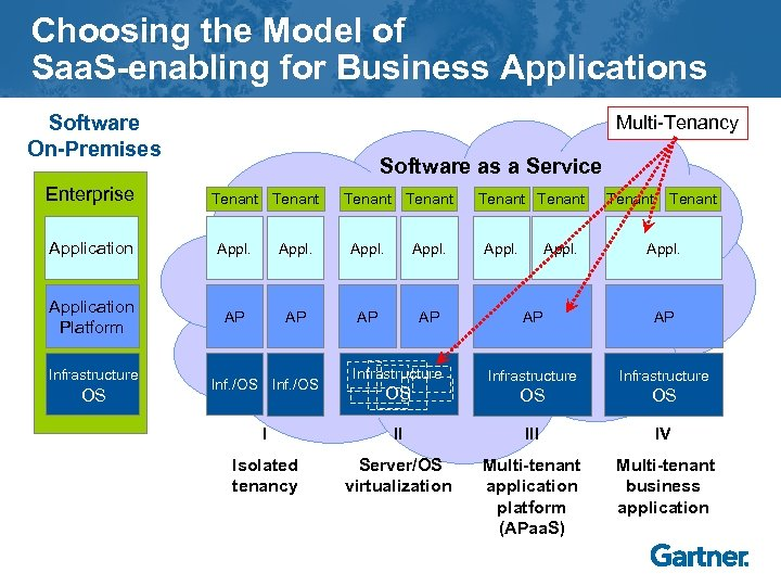 Choosing the Model of Saa. S-enabling for Business Applications Software On-Premises Enterprise Multi-Tenancy Software