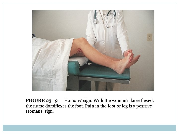 FIGURE 23– 9 Homans' sign: With the woman's knee flexed, the nurse dorsiflexes the
