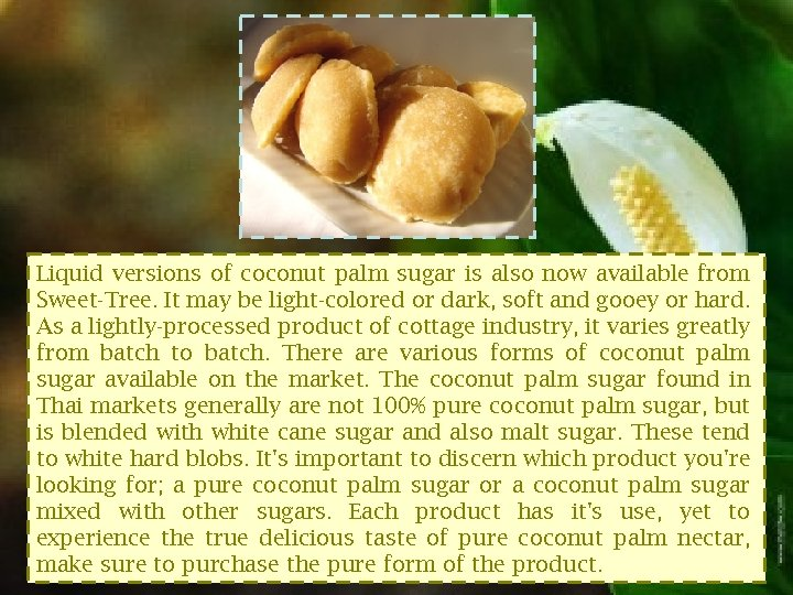Liquid versions of coconut palm sugar is also now available from Sweet-Tree. It may