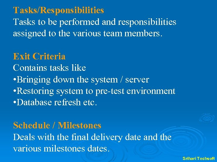 Tasks/Responsibilities Tasks to be performed and responsibilities assigned to the various team members. Exit