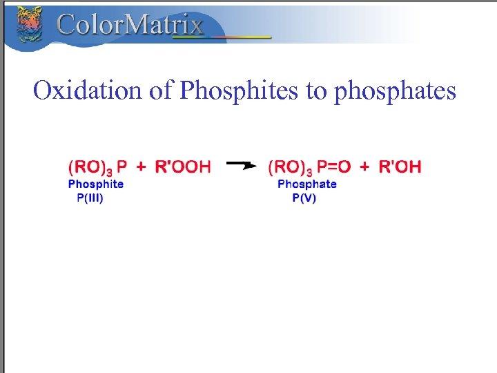 Oxidation of Phosphites to phosphates