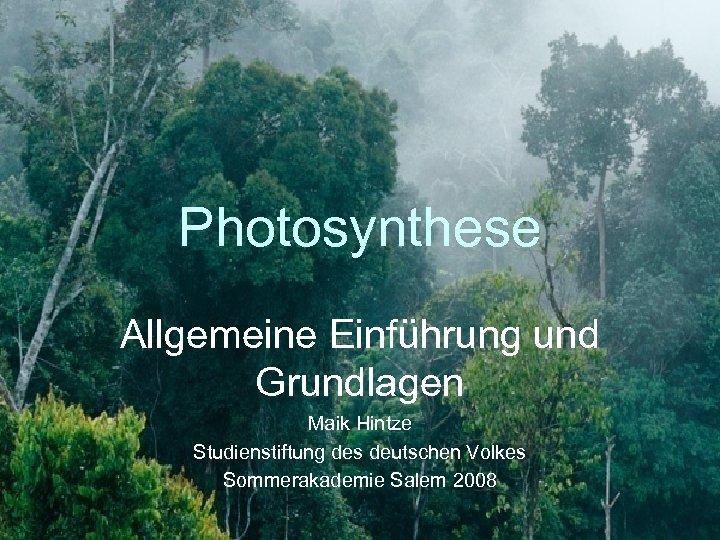 Photosynthese Allgemeine Einführung und Grundlagen Maik Hintze Studienstiftung des deutschen Volkes Sommerakademie Salem 2008