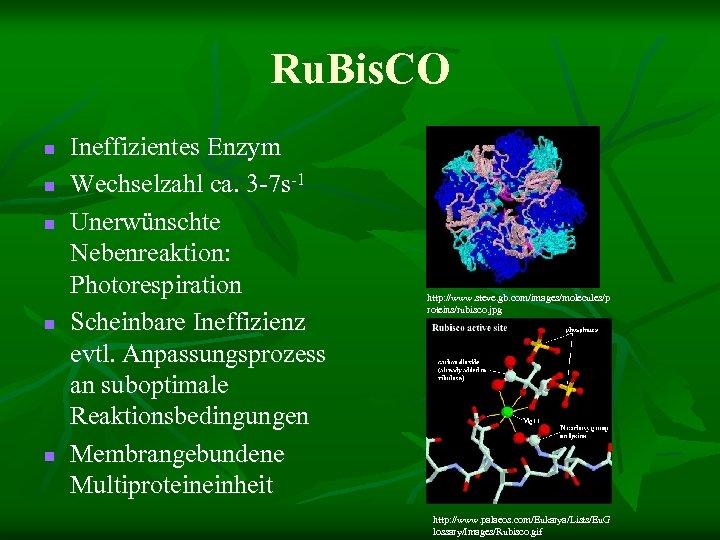 Ru. Bis. CO n n n Ineffizientes Enzym Wechselzahl ca. 3 -7 s-1 Unerwünschte
