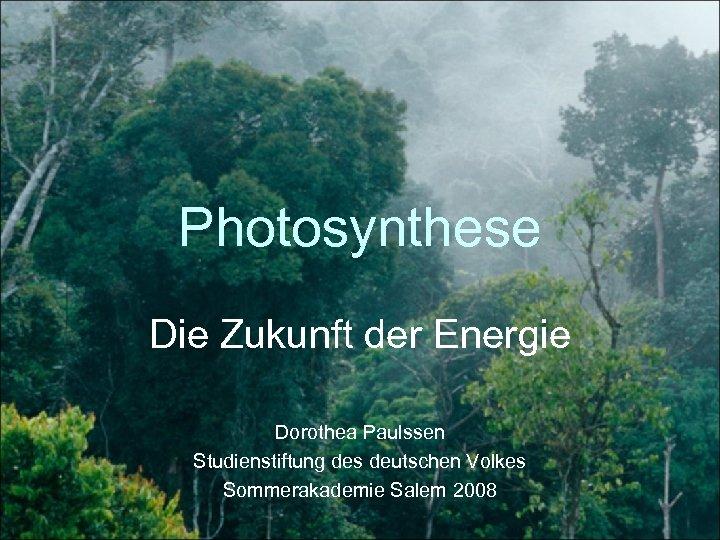 Photosynthese Die Zukunft der Energie Dorothea Paulssen Studienstiftung des deutschen Volkes Sommerakademie Salem 2008