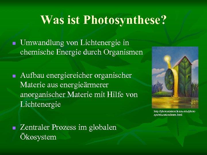 Was ist Photosynthese? n n Umwandlung von Lichtenergie in chemische Energie durch Organismen Aufbau