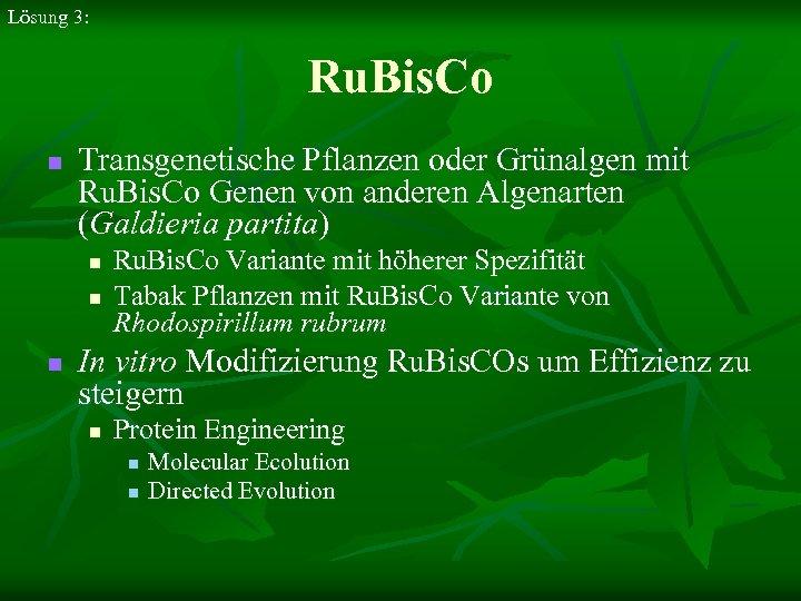 Lösung 3: Ru. Bis. Co n Transgenetische Pflanzen oder Grünalgen mit Ru. Bis. Co