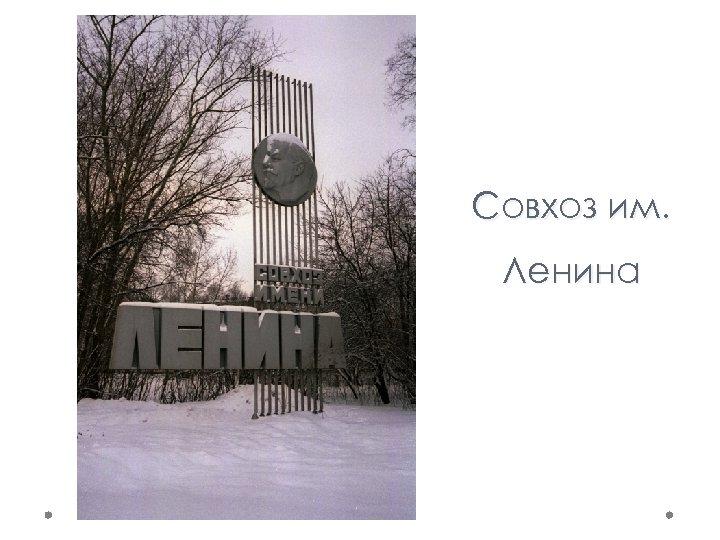 Совхоз им. Ленина
