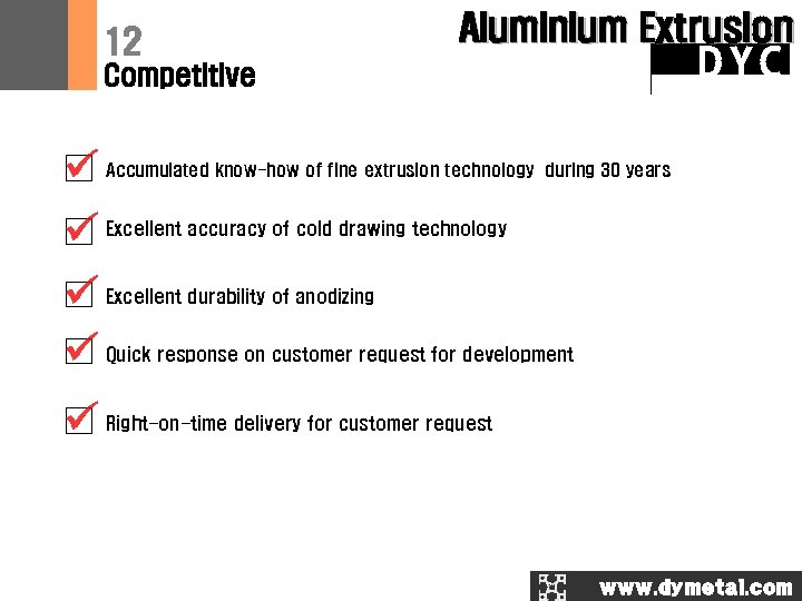 12 Aluminium Extrusion DYC Competitive Accumulated know-how of fine extrusion technology during 30 years
