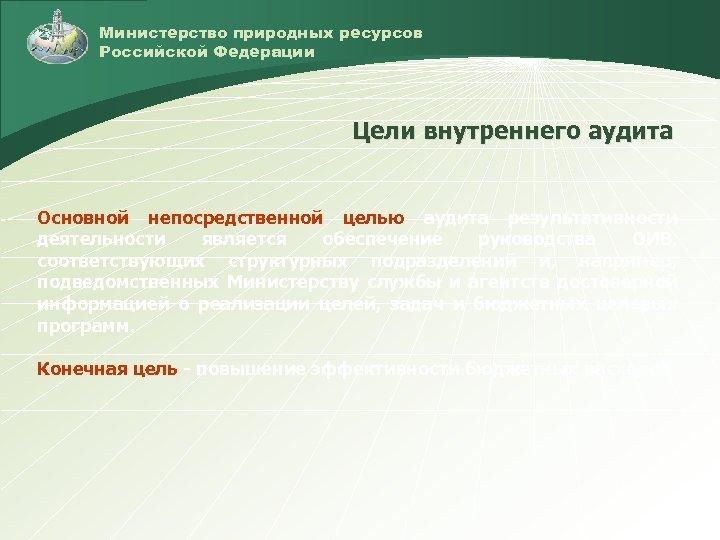 Министерство природных ресурсов Российской Федерации Цели внутреннего аудита Основной непосредственной целью аудита результативности деятельности