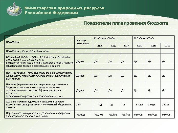 Министерство природных ресурсов Российской Федерации Показатели планирования бюджета Показатели Единица измерения Отчетный период 2005