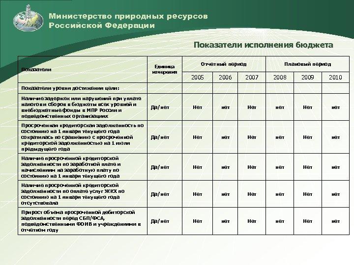 Министерство природных ресурсов Российской Федерации Показатели исполнения бюджета Показатели Единица измерения Отчетный период Плановый