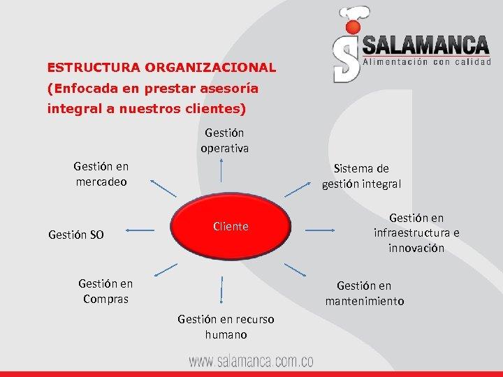 ESTRUCTURA ORGANIZACIONAL (Enfocada en prestar asesoría integral a nuestros clientes) Gestión operativa Gestión en