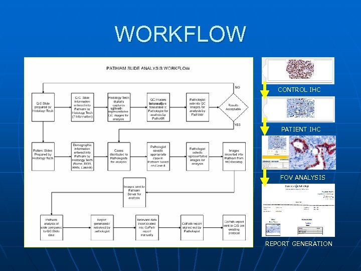 WORKFLOW CONTROL IHC PATIENT IHC FOV ANALYSIS REPORT GENERATION