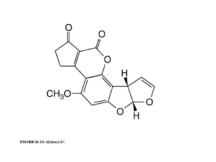 FIGURE 01 -15: Aflatoxin B 1.