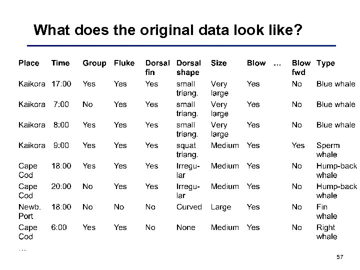 What does the original data look like? 57