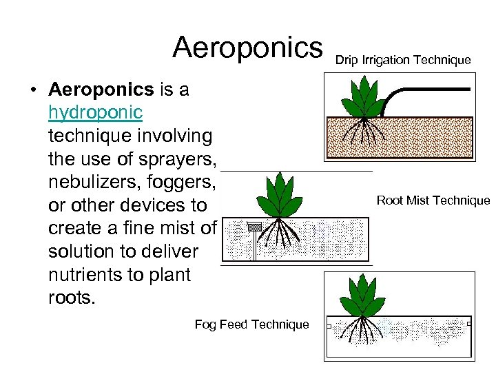 Aeroponics • Aeroponics is a hydroponic technique involving the use of sprayers, nebulizers, foggers,