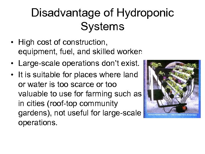 Disadvantage of Hydroponic Systems • High cost of construction, equipment, fuel, and skilled workers.