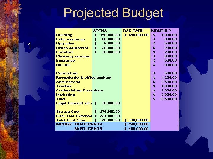 Projected Budget 1