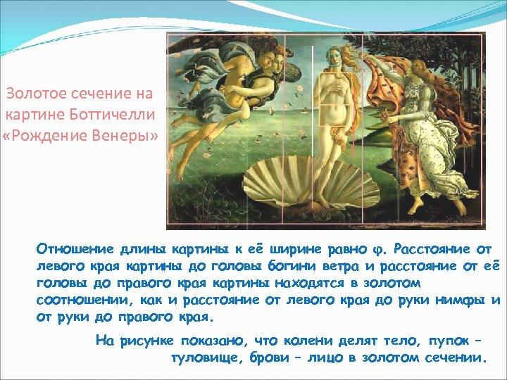 Золотое сечение на картине Боттичелли «Рождение Венеры» Отношение длины картины к её ширине равно