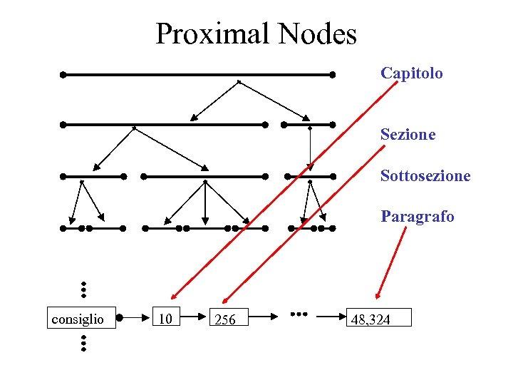 Proximal Nodes Capitolo Sezione Sottosezione Paragrafo consiglio 10 256 48, 324