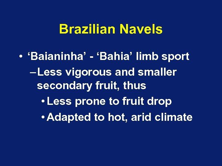 Brazilian Navels • 'Baianinha' - 'Bahia' limb sport – Less vigorous and smaller secondary