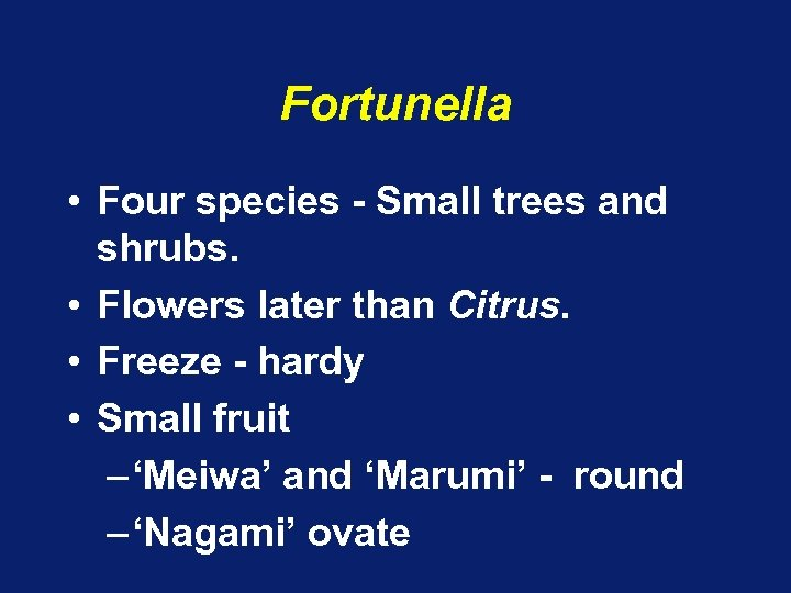 Fortunella • Four species - Small trees and shrubs. • Flowers later than Citrus.
