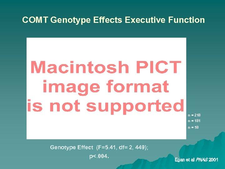 COMT Genotype Effects Executive Function n = 218 n = 181 n = 58
