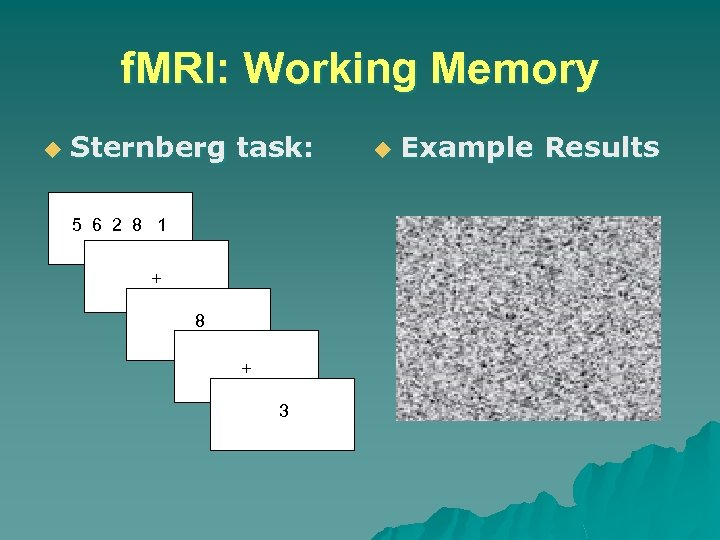 f. MRI: Working Memory u Sternberg task: 5 6 2 8 1 + 8