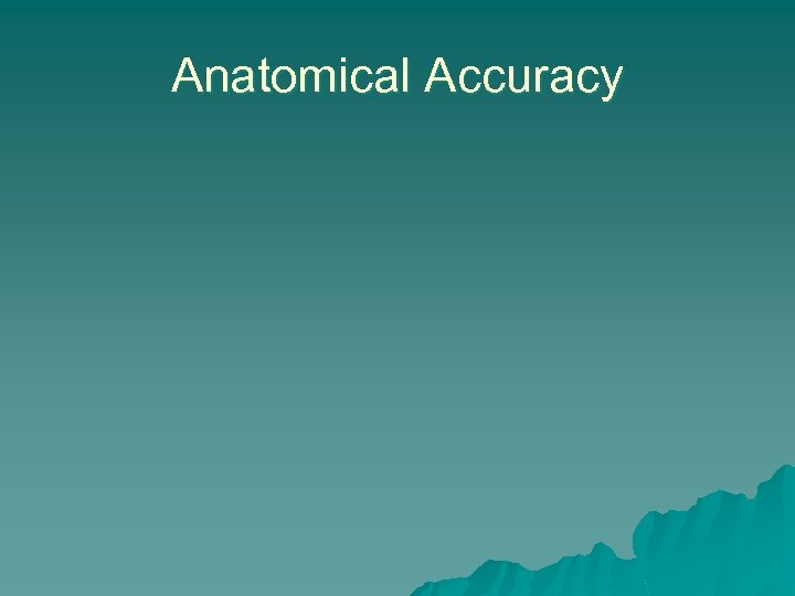 Anatomical Accuracy