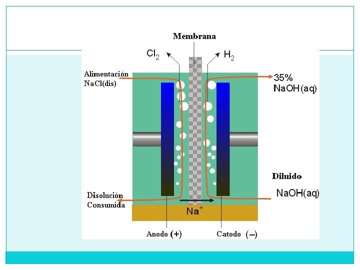 Célula de membrana