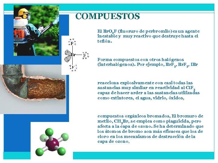 COMPUESTOS El Br. O 3 F (fluoruro de perbromilo)es un agente inestable y muy