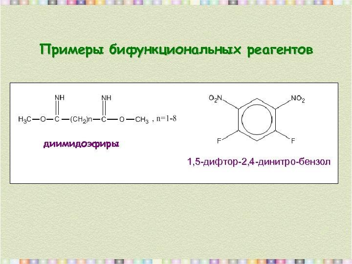 Примеры бифункциональных реагентов диимидоэфиры 1, 5 -дифтор-2, 4 -динитро-бензол