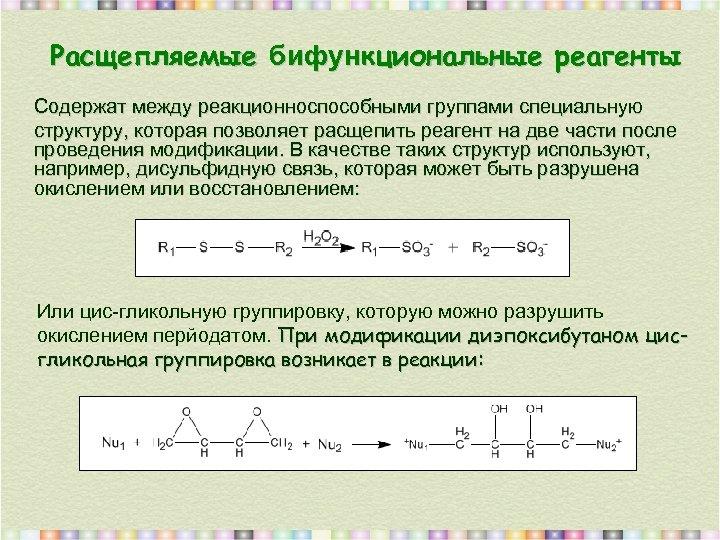 Расщепляемые бифyнкциональные реагенты Содержат между реакционноспособными группами специальную структуру, которая позволяет расщепить реагент на