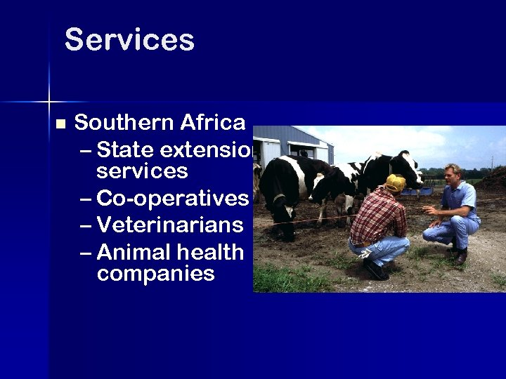 Services n Southern Africa – State extension services – Co-operatives – Veterinarians – Animal