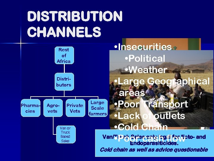 DISTRIBUTION CHANNELS Rest of Africa Distributors Pharmacies Agrovets Private Vets Van or Truck Based