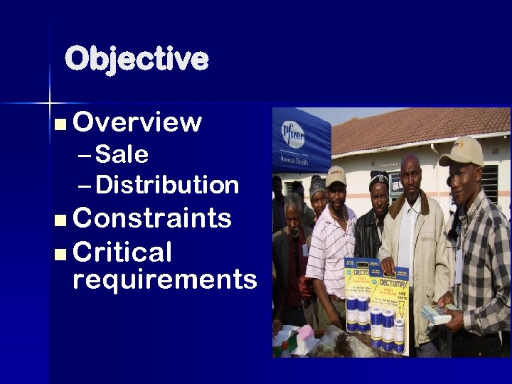 Objective n Overview – Sale – Distribution n Constraints n Critical requirements