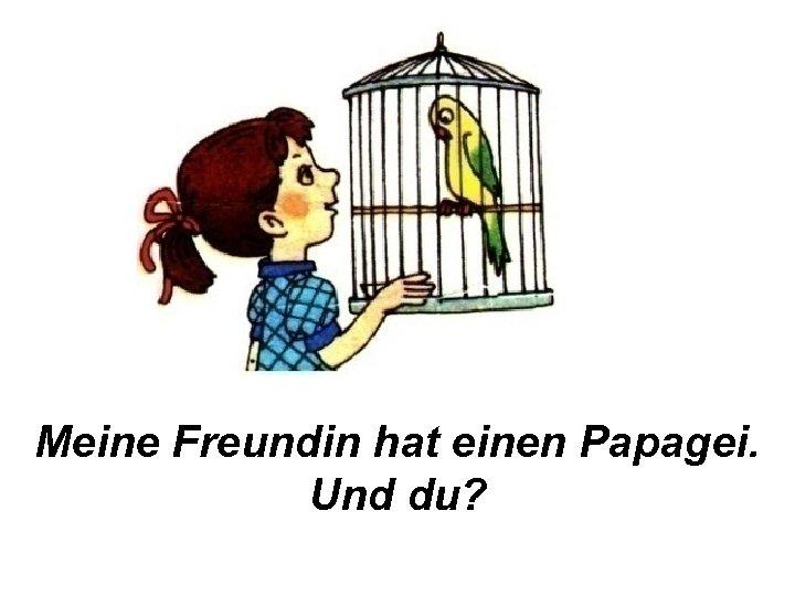 Meine Freundin hat einen Papagei. Und du?