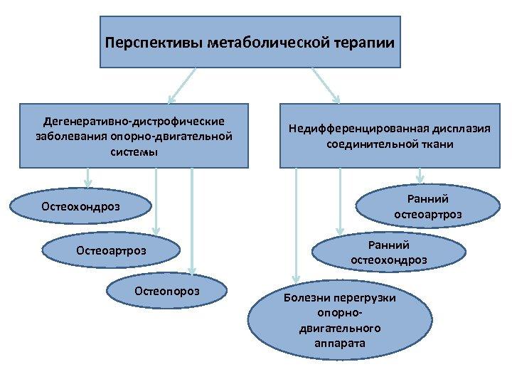 Перспективы метаболической терапии Дегенеративно-дистрофические заболевания опорно-двигательной системы Недифференцированная дисплазия соединительной ткани Ранний остеоартроз Остеохондроз