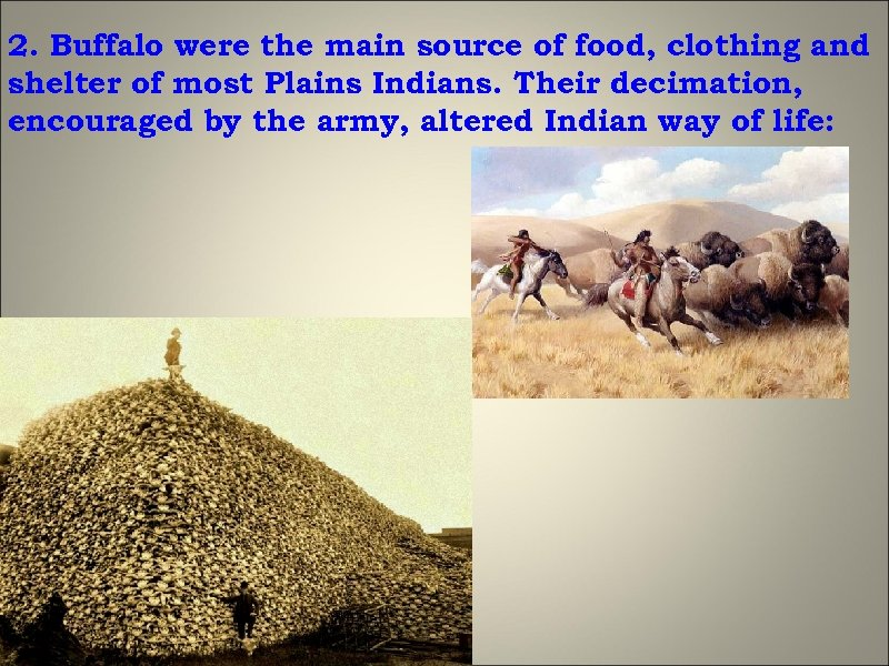 2. Buffalo were the main source of food, clothing and shelter of most Plains