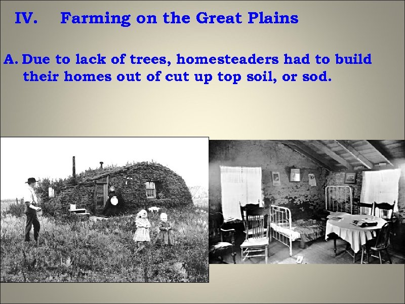 IV. Farming on the Great Plains A. Due to lack of trees, homesteaders had