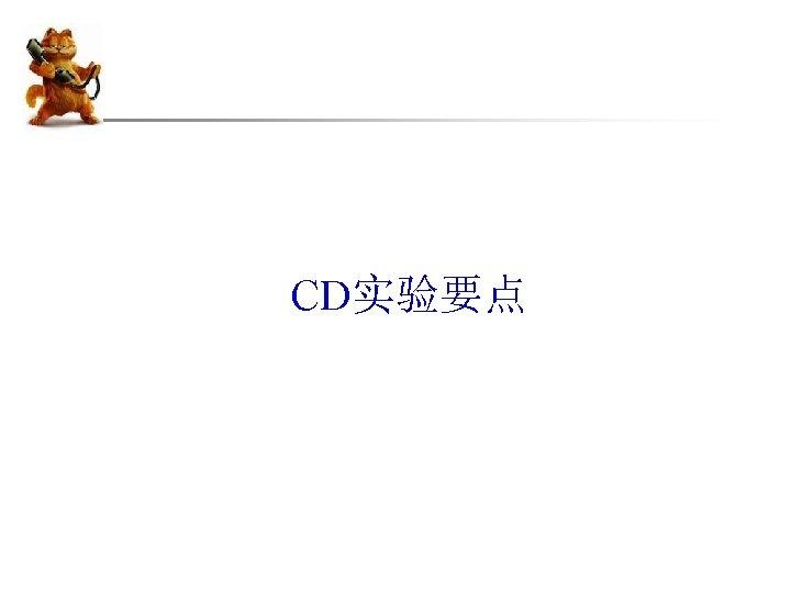 CD实验要点