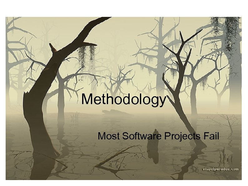 Methodology Most Software Projects Fail
