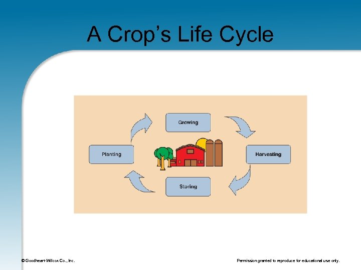 A Crop's Life Cycle © Goodheart-Willcox Co. , Inc. Permission granted to reproduce for