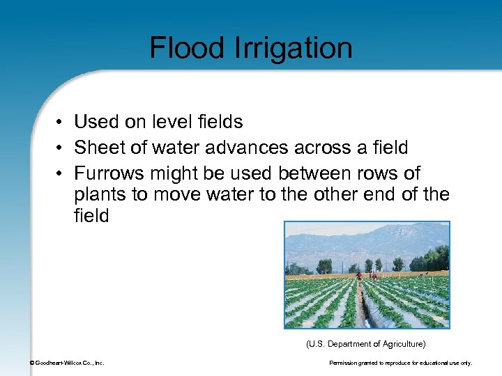 Flood Irrigation • Used on level fields • Sheet of water advances across a
