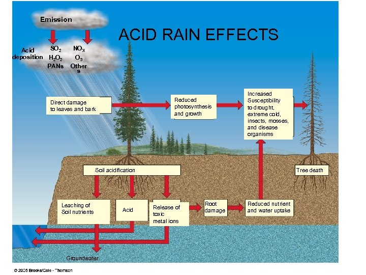 Emission ACID RAIN EFFECTS SO 2 Acid deposition H 2 O 2 PANs NOX