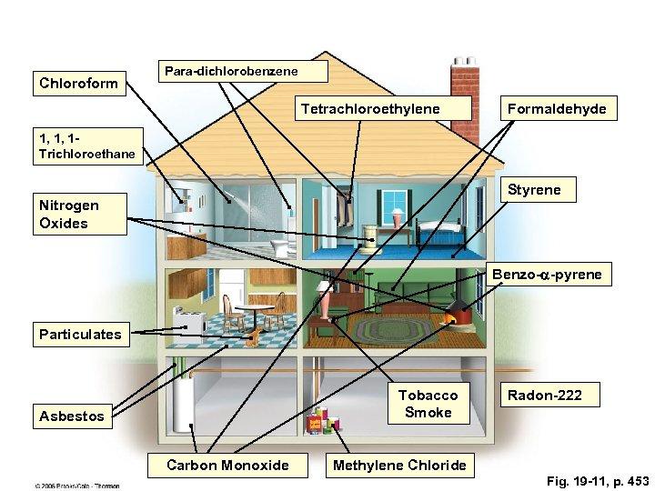 Chloroform Para-dichlorobenzene Tetrachloroethylene Formaldehyde 1, 1, 1 Trichloroethane Styrene Nitrogen Oxides Benzo-a-pyrene Particulates Tobacco