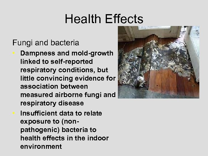 Health Effects Fungi and bacteria • Dampness and mold-growth linked to self-reported respiratory conditions,
